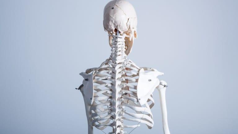 首と背中が痛い!背中の痛みの原因は?のアイキャッチ画像